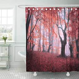 Emvency Fabric Shower Curtain Curtains with Hooks Colorful M