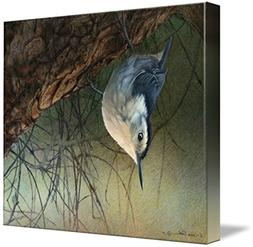 Imagekind Wall Art Print entitled Nuthatch Inverted R Christ
